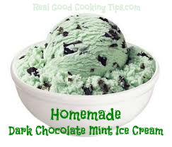 Homemade Dark Chocolate Mint Chip Ice Cream Recipe